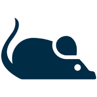 RODENT DROPPINGS CLEANUP
